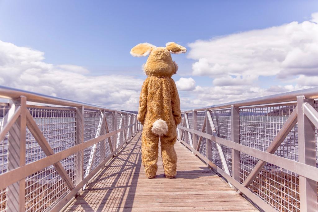 rabbit-bridge-sky