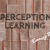 perception-learning-dtj-cover